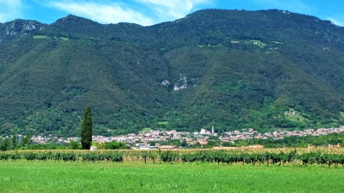 borso-del-grappa-bicycle-tours
