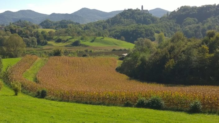 Italian-bicycle-tours-the-Prosecco-Wine-Country